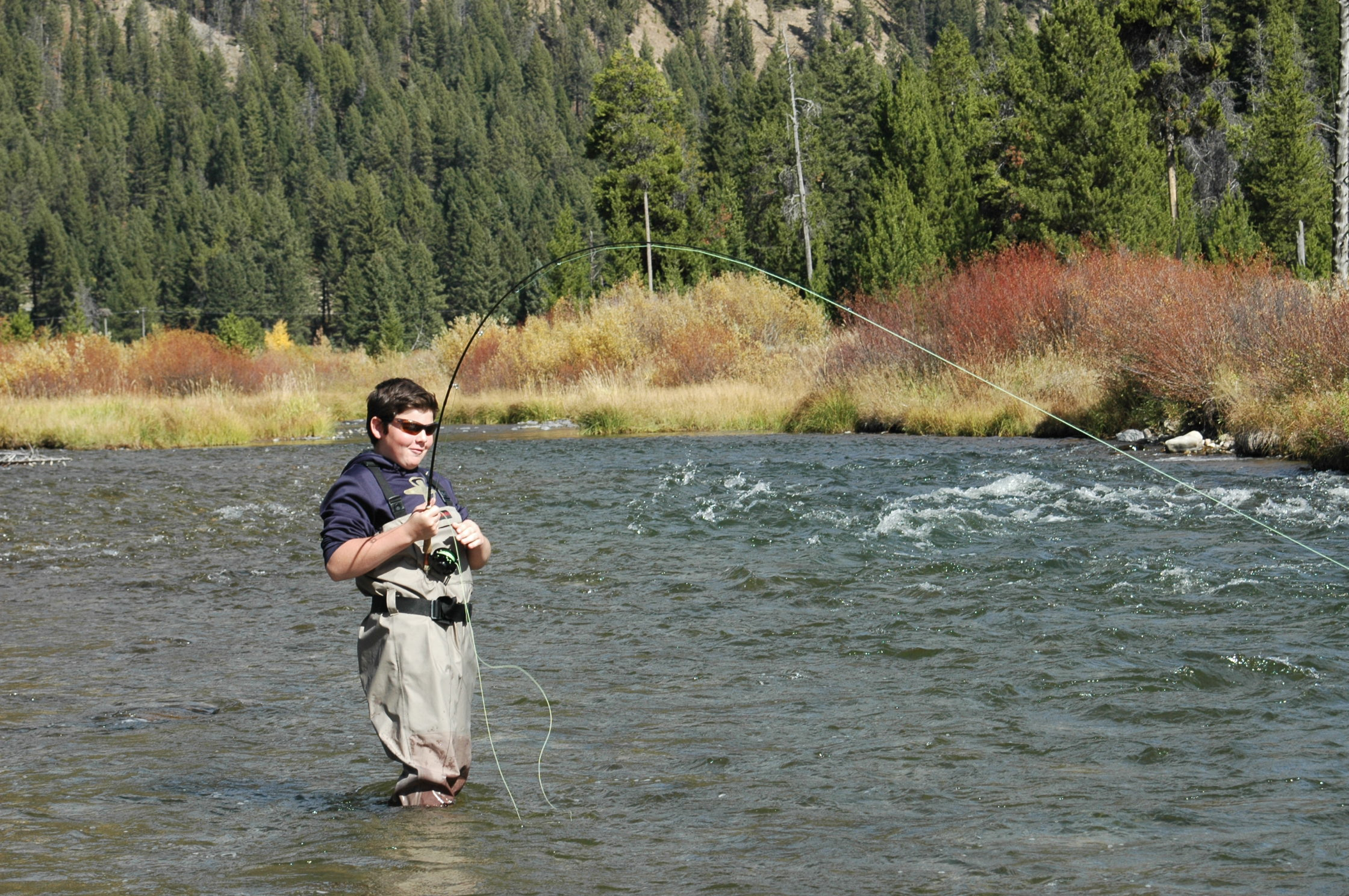 Montana Yellowstone Fly Fishing Lost Fork