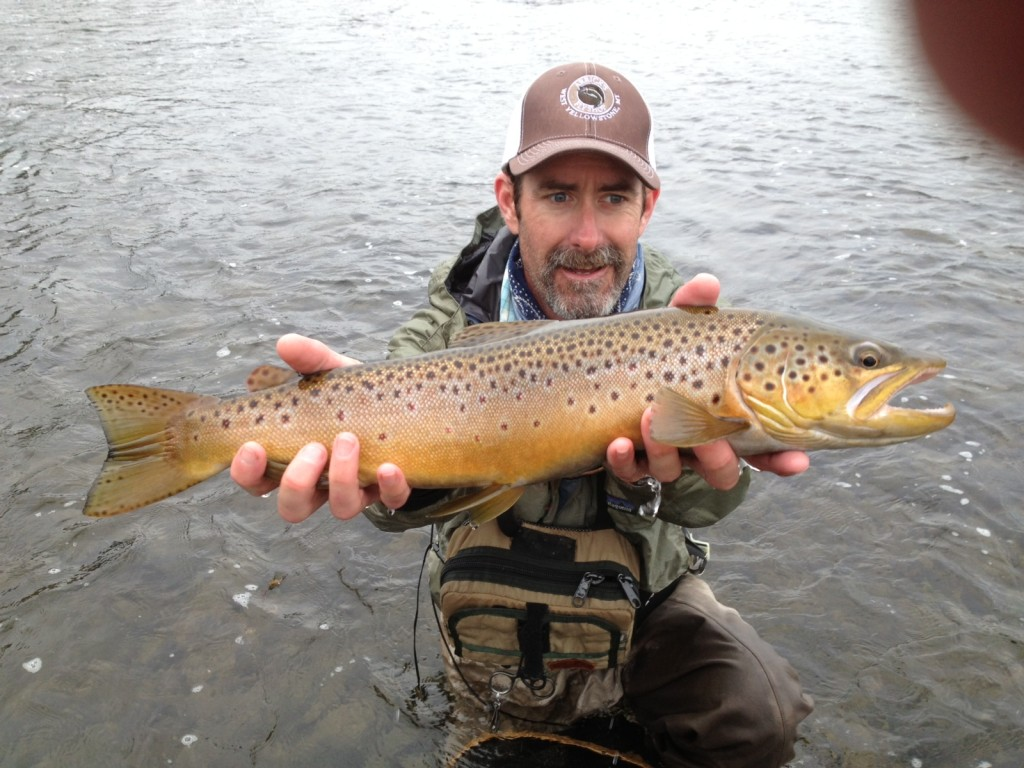 Fly Fishing Rates